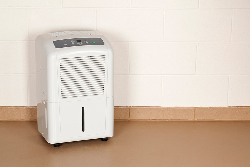 Use a dehumidifier to take out excess moisture in your basement.